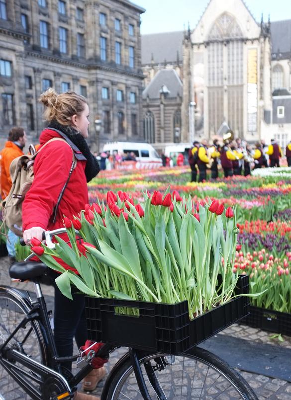Najzabavniji januar u Evropi - Pronađite dašak proleća u Amsterdamu za dan Tulipana 2