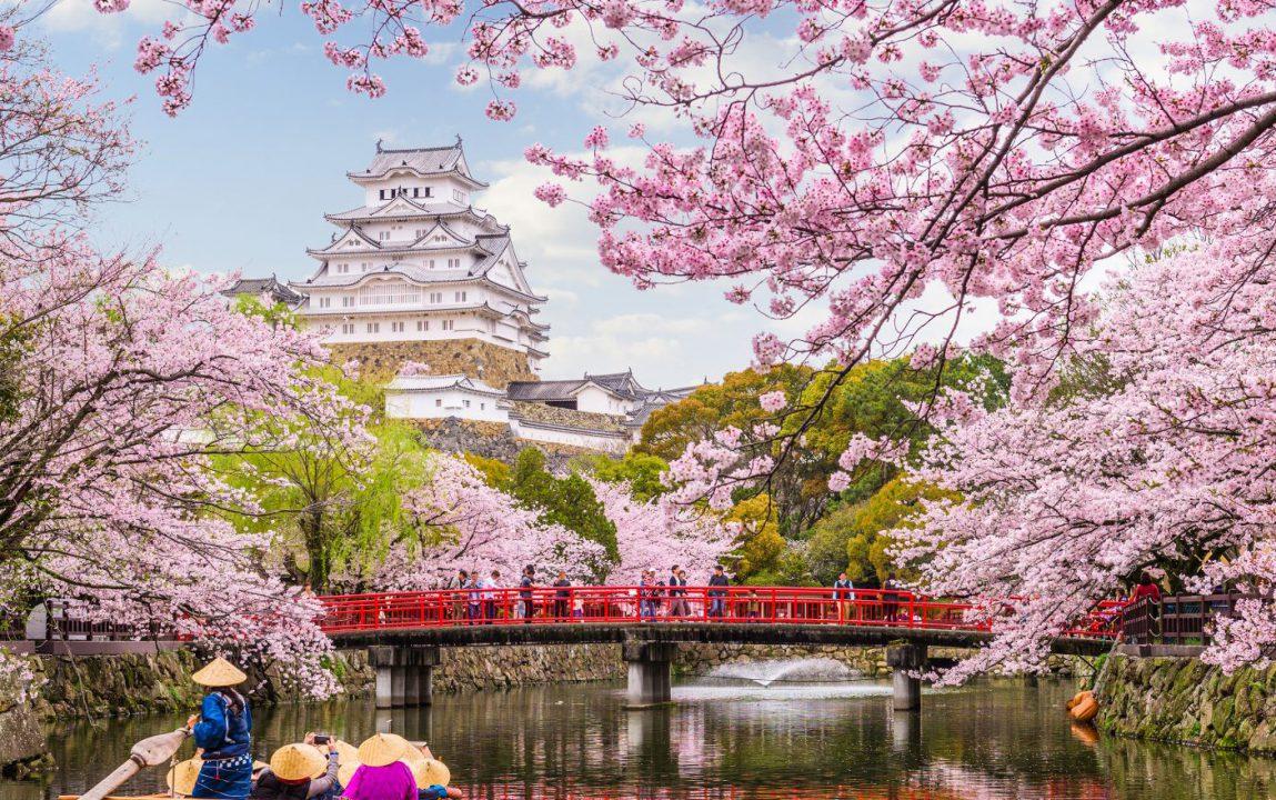 Emirates - Zimska promotivna akcija Tokio Cherry Blossom