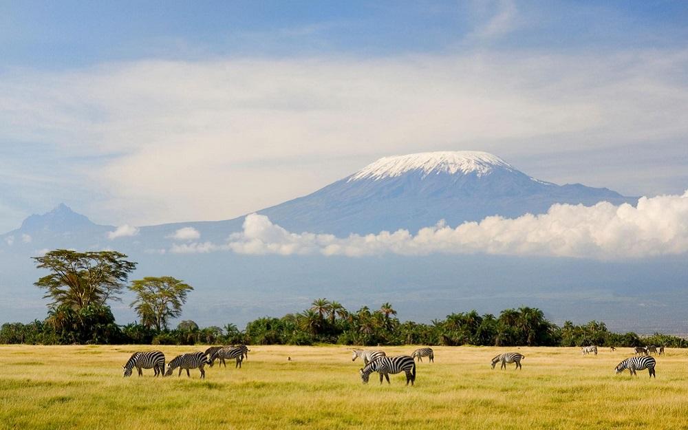 Ethiopian Airlines - East African Week promotivne cene
