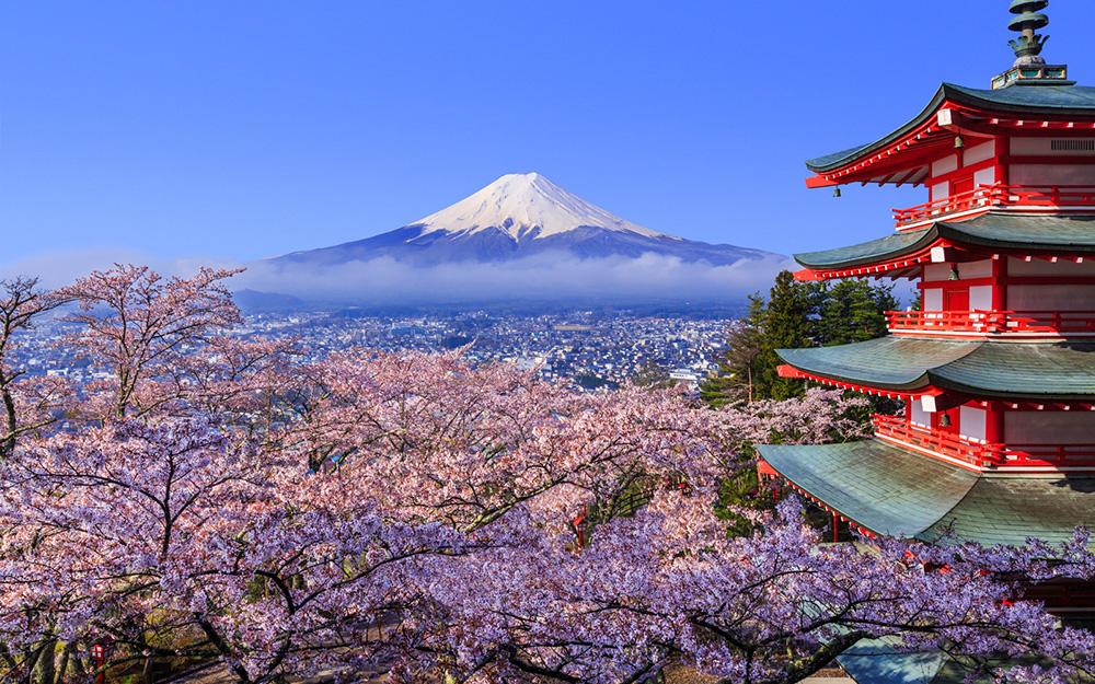 Qatar Airways - Proslavite Dan cvetanja stabla trešnje u Japanu
