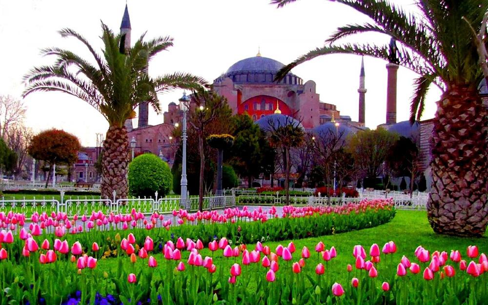 Turkish Airlines - Specijalna cena Istanbul za vreme Festivala Lala
